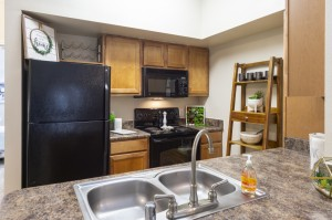 Two Bedroom Apartments for Rent in Northwest Houston, TX - Model Kitchen (5)